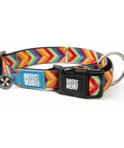Max & Molly Collar para perros Summertime