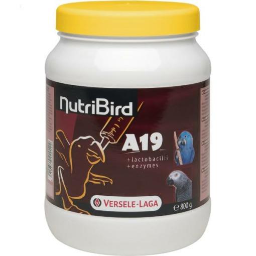 Nutribird A 19 papilla para cría de loros