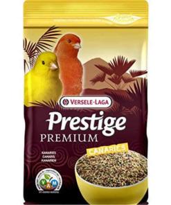 prestige premium canarios