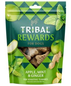 galletas tribal de manzana y menta
