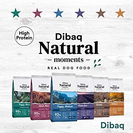 Dibaq natural moments