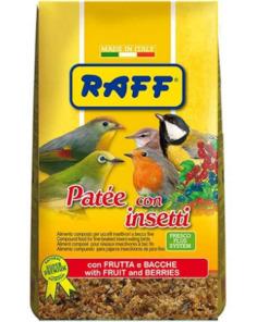 raff pate con insectos