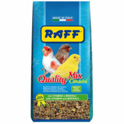raff quality mix canarini