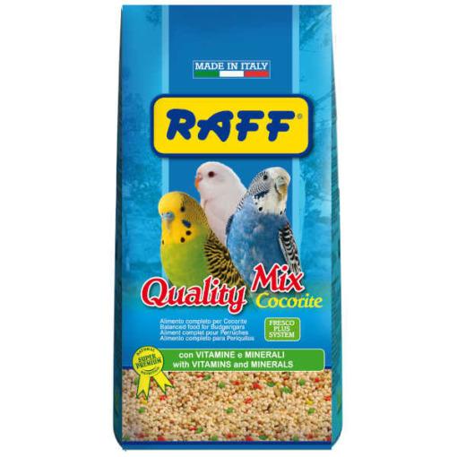 raff quality periquitos